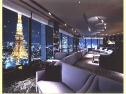 Tokyo Prince Park Tower 5 <span class=